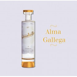 GIN GINABELLE 70 CL.
